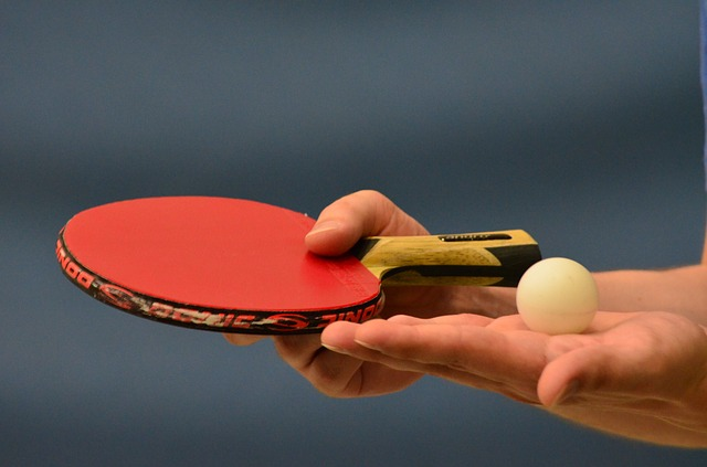 table tennis 407489 640